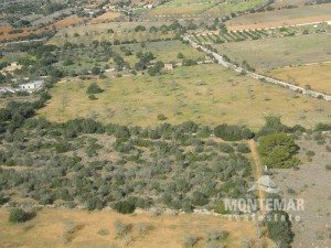Beautiful plot close to Ses Salines