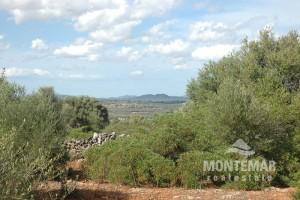 Santanyi - Plot of land with beautiful panoramic views