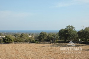 Building plot in Alqueria Blanca with views of the sea