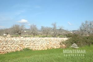 Building plot in Calonge