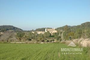 Building plot in Es Carritxó