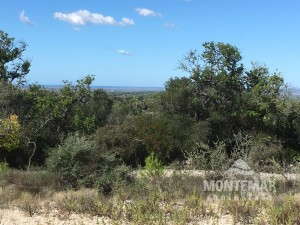 Plot with fantastic Panorama-Sea view in Es Carritxo