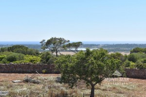 New Country Home with spectacular views to the sea and the isle of Cabrera - Santanyi