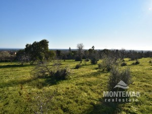 Building plot with sea view an permission in Alqueria Blanca