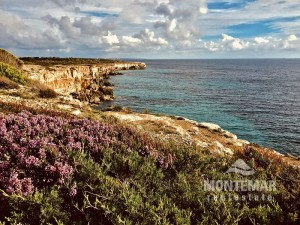 Charming Finca near Santanyí for long-term rent