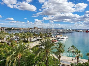 Palma/Paseo Marítimo - Nice apartment with spectacular views