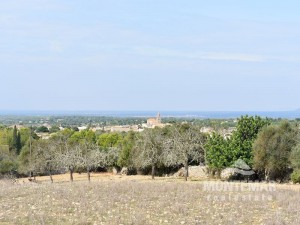 Cas Concos - Finca building plot with panoramic views and license