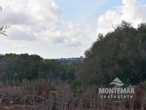 Property with a view and existing building permit in Alqueria Blanca