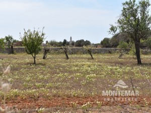 Santanyí - Plot with building project in beautiful location