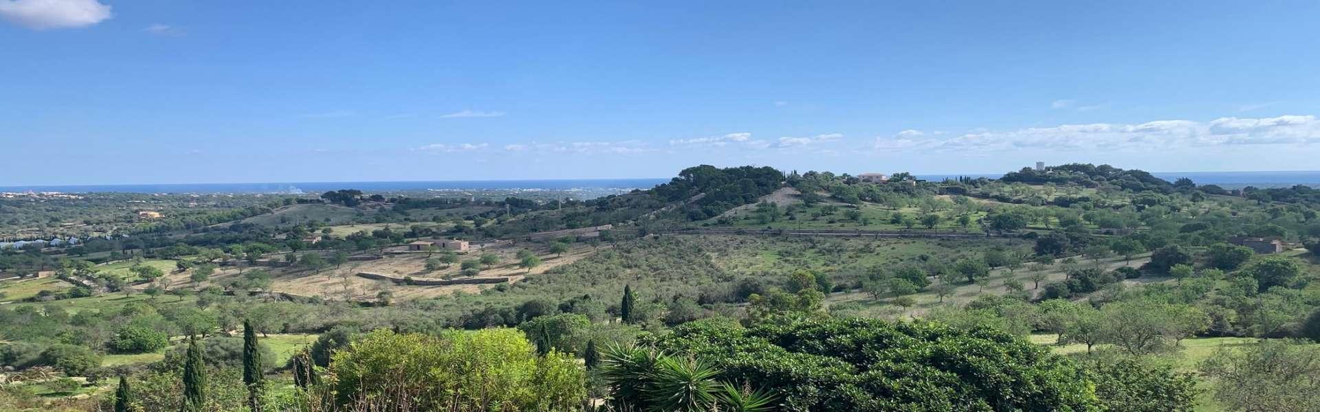 Alqueria Blanca - Country estate with fantastic views
