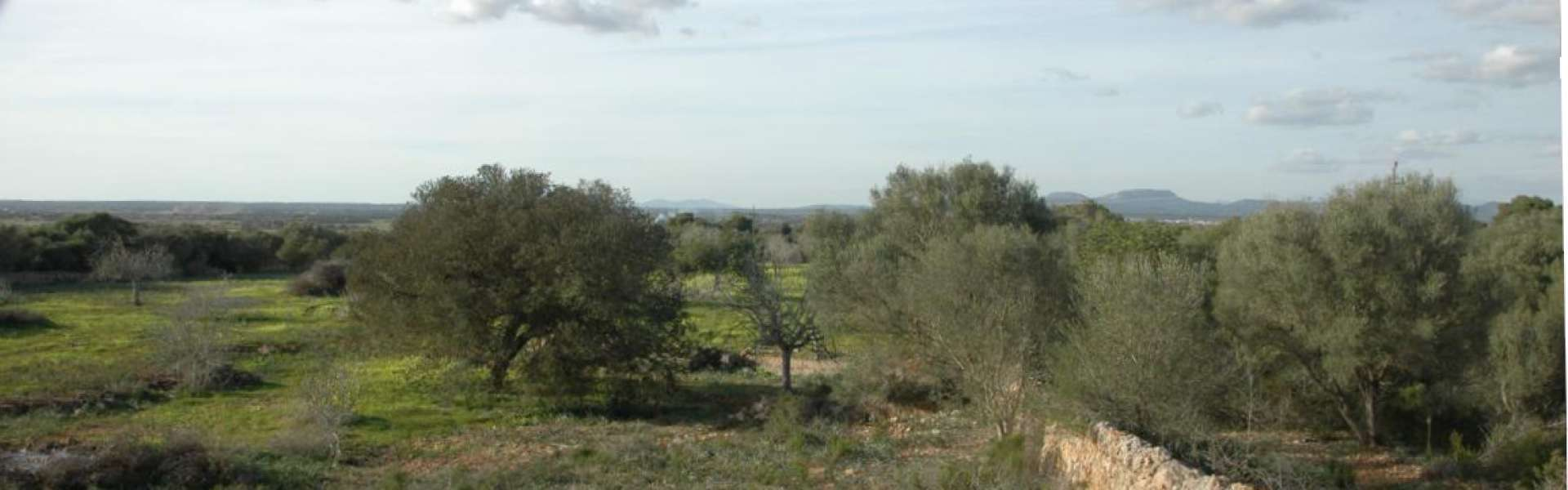 Plot of land in scenic location nearby Es Trenc