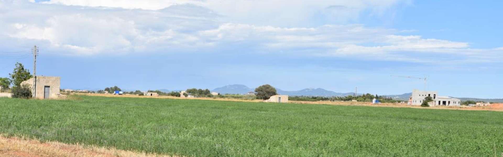 Building plot close to Sa Rapita