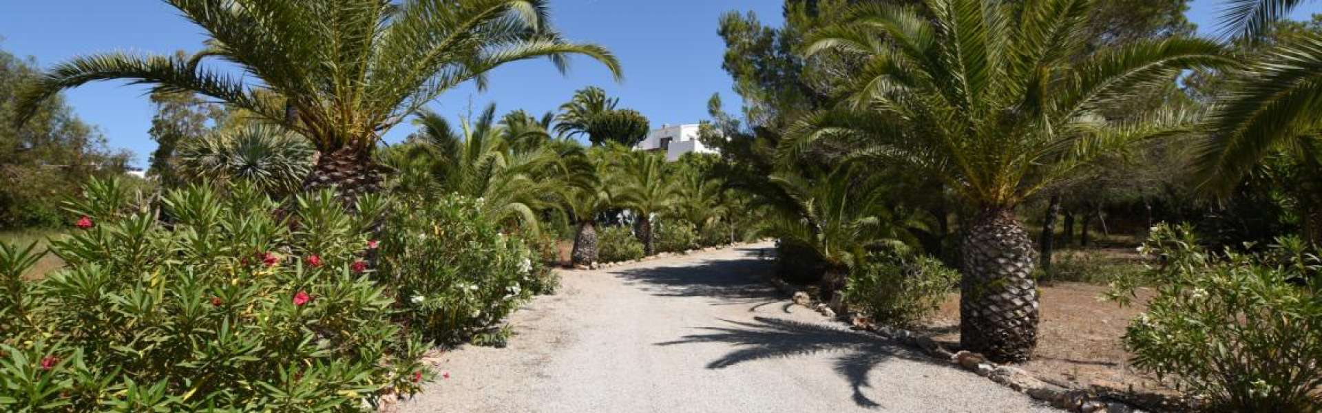 Seaview-Property close to Colonia Sant Jordi