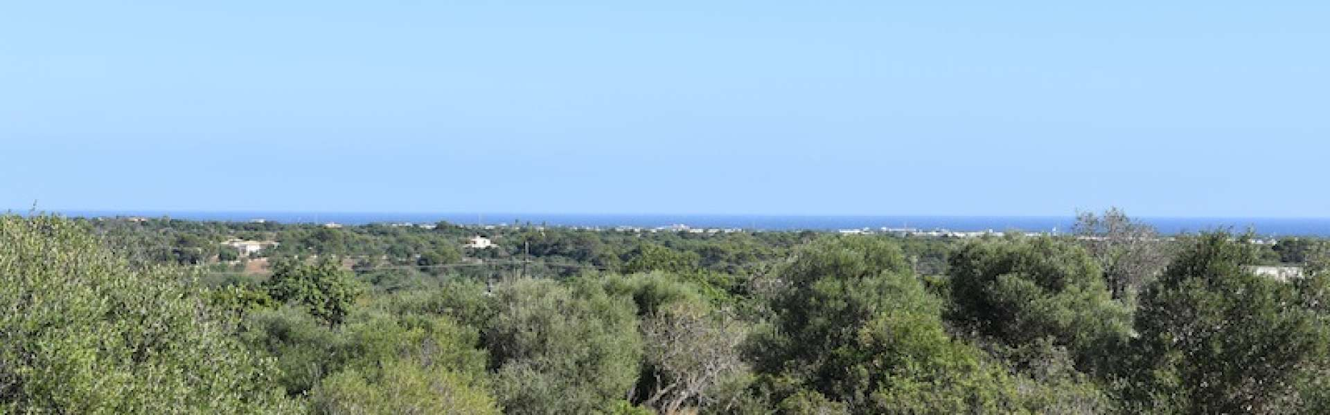 Seaview Plot for Sale - Alqueria Blanca