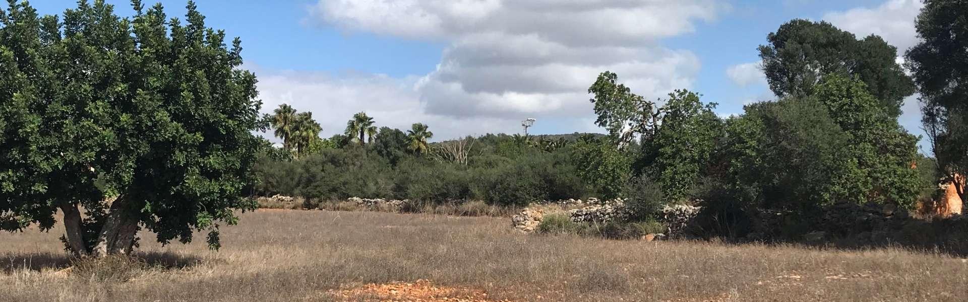 Seaview plot in Alqueria Blanca