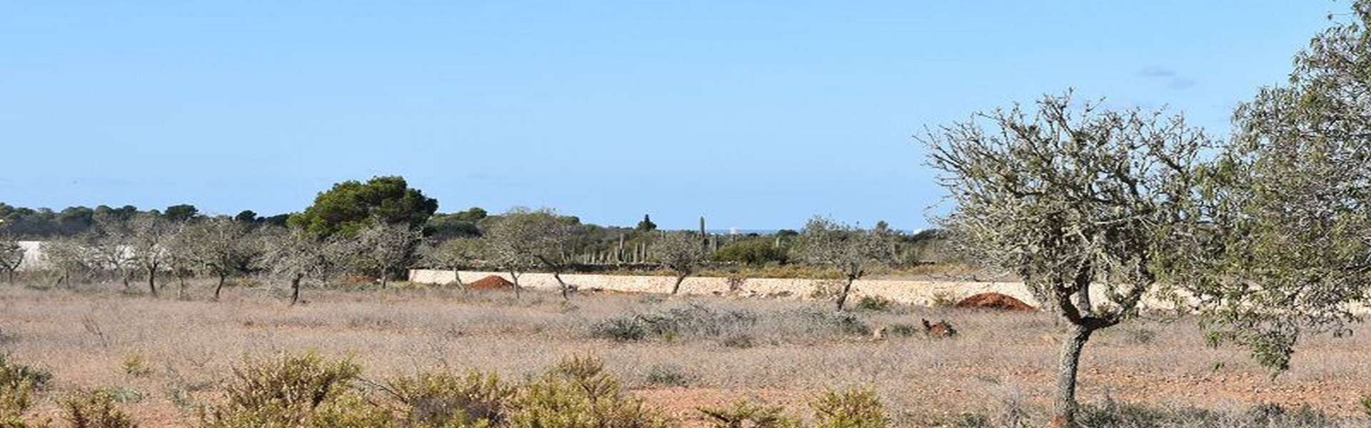 Building plot with approved project at Cap de Ses Salines