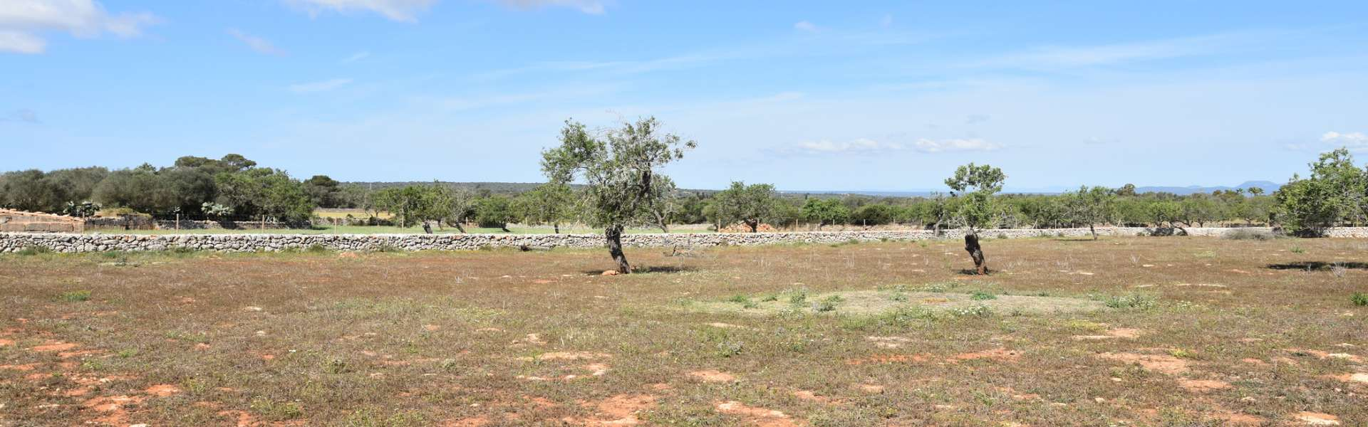 New construction project - country house in wonderful location in Santanyí