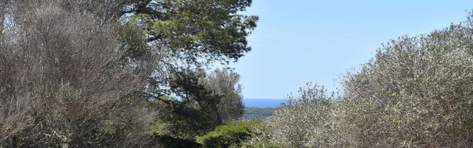 Santanyí - Plot with building project & sea view